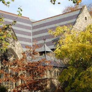 Skalūno Welsh Slate Penrhyn & Unfading Green natūrali stogo danga