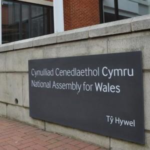 Skalūnas Welsh Slate